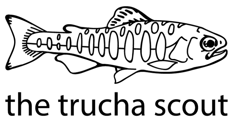 the trucha scout logo
