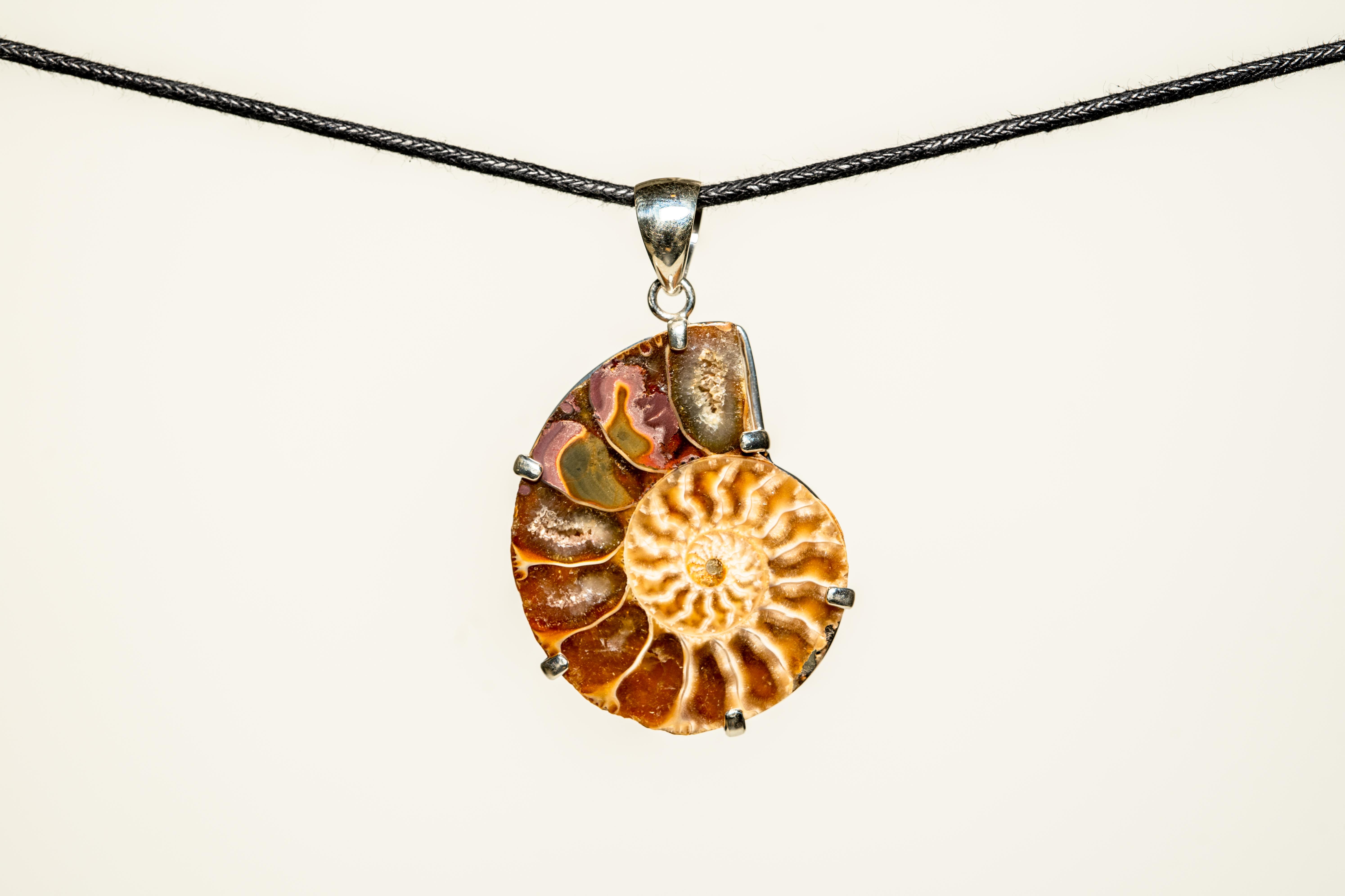 ammonite white (1 of 1)