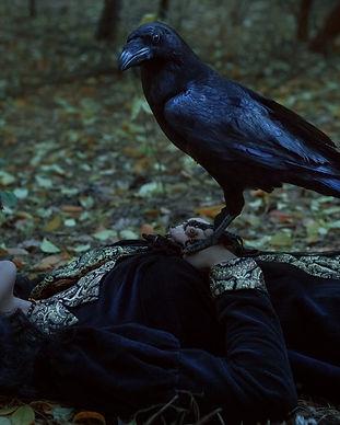 A mystical raven is sitting on a dead woman._edited.jpg