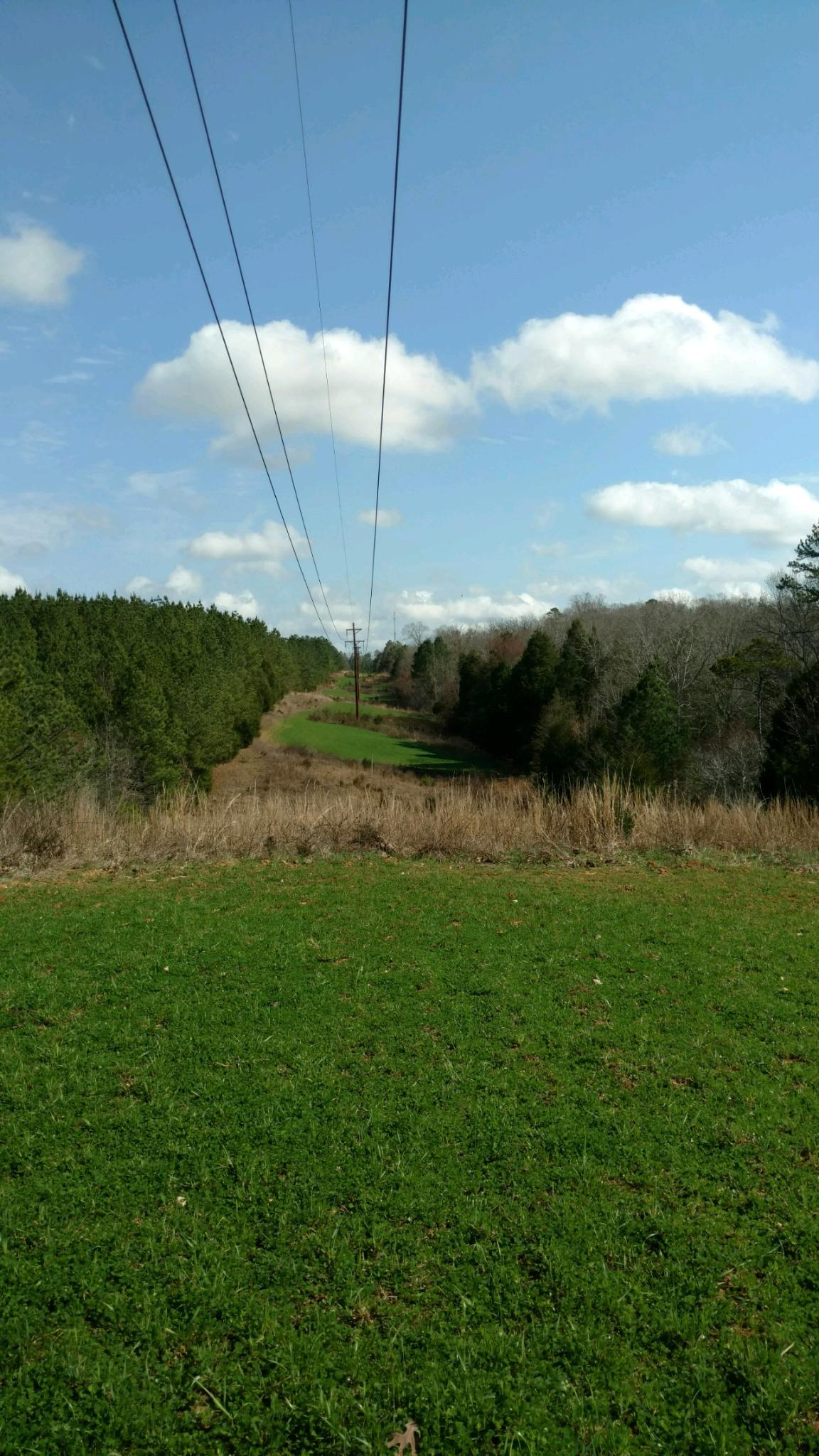 Powerline 10 looking toward 9