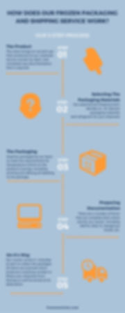 Shipping Service Infographic