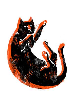 Riso Cat