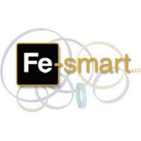 fe-smart_edited.png