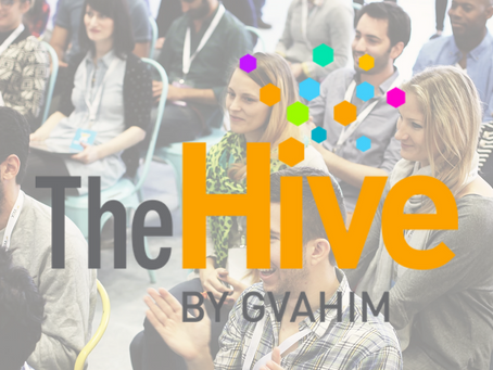 OKO selected by The Hive accelerator programme!