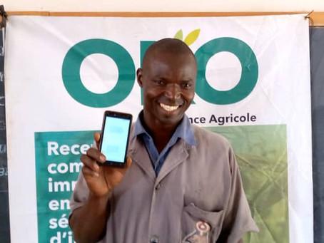 OKO raises $1.2 million to bring innovative insurance to smallholder farmers across Africa