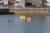 paddleboat8.jpg