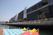 paddleboat5.jpg