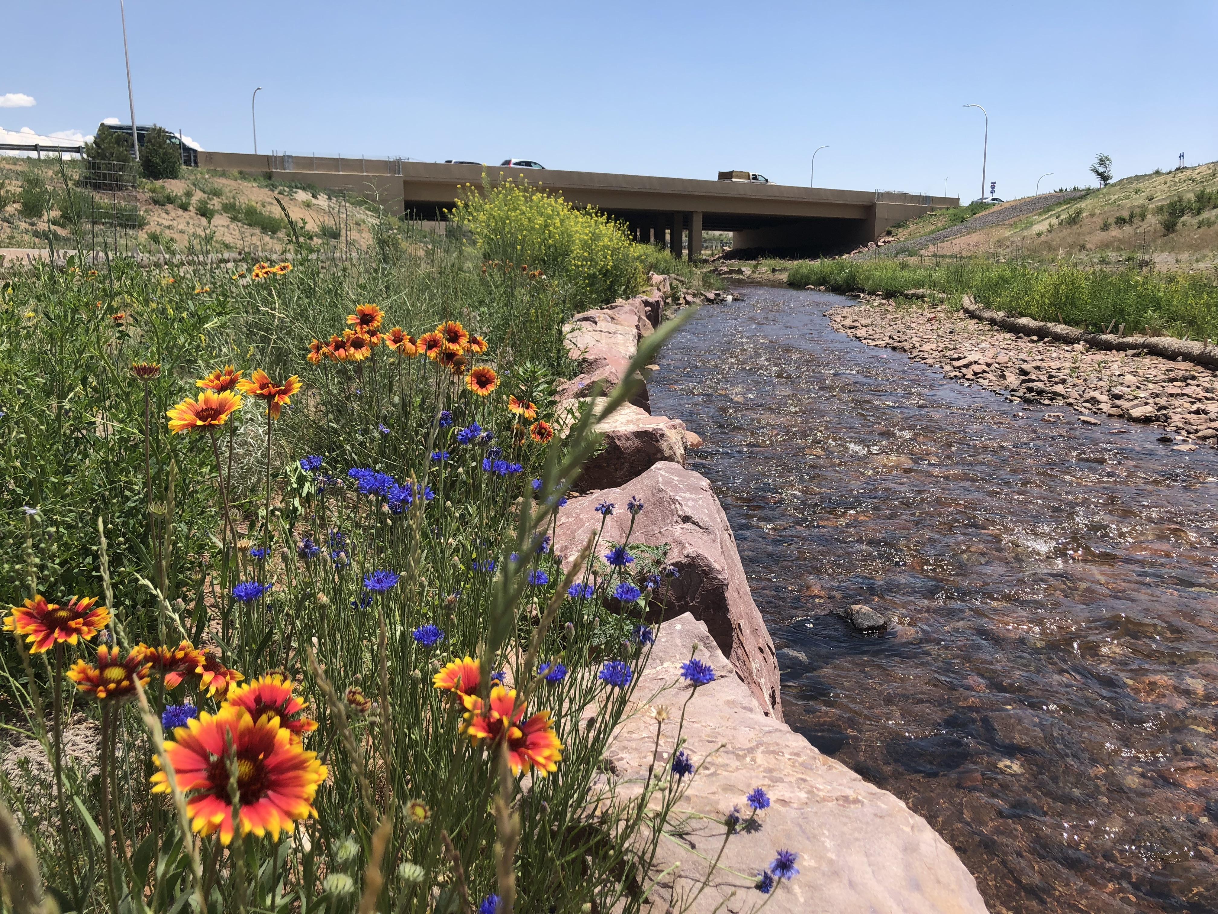 Upper Fountain Creek restoration