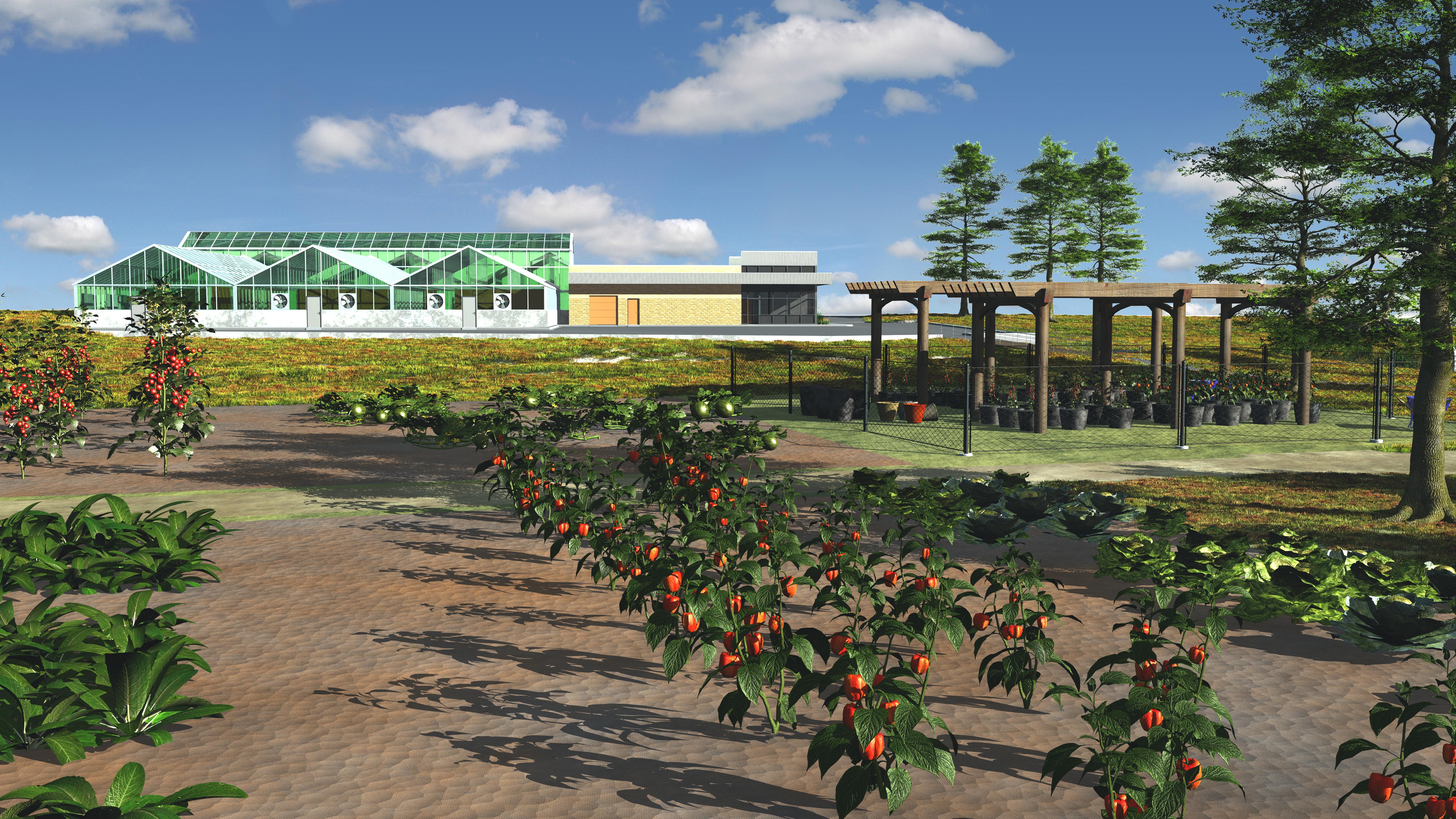 PERC 3D rendering
