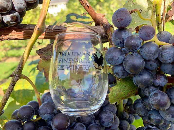 troutman vineyards glass.jpg