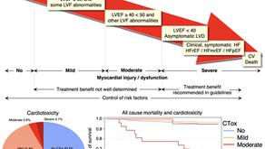 נתונים חדשים לגבי השפעת טיפולים אונקולוגיים על תפקוד הלב
