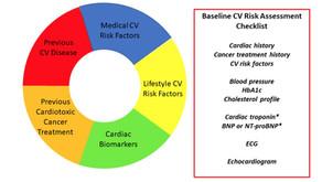 כלי חדש להערכת סיכון לרעילות הלב של טיפולים אונקולוגיים