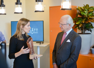 Visit by the King of Sweden