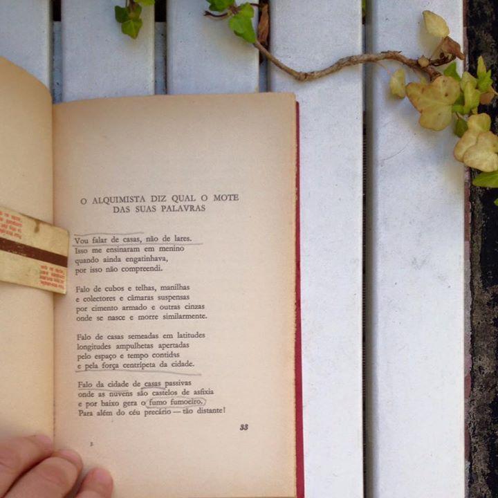 Poema do livro de Carrapato