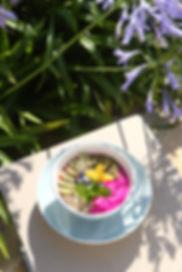 pitaya frutas unique garden