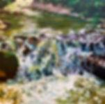RiesCJuncture38x38.jpg