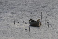 Fischer und sein Netz