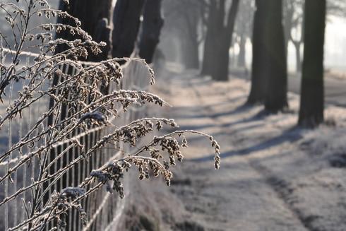 auf zur Winterzeit
