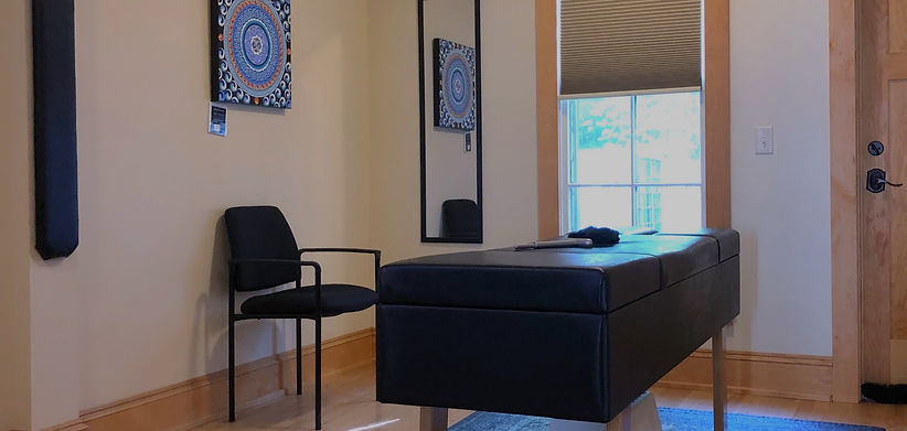 Dr. Barton Chiroptractic interior of ithaca office