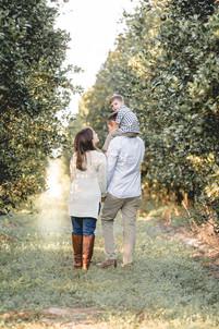 family walking down in an orange grove