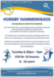 NEW Hornby Hammerheads - 18 02 2020.jpg