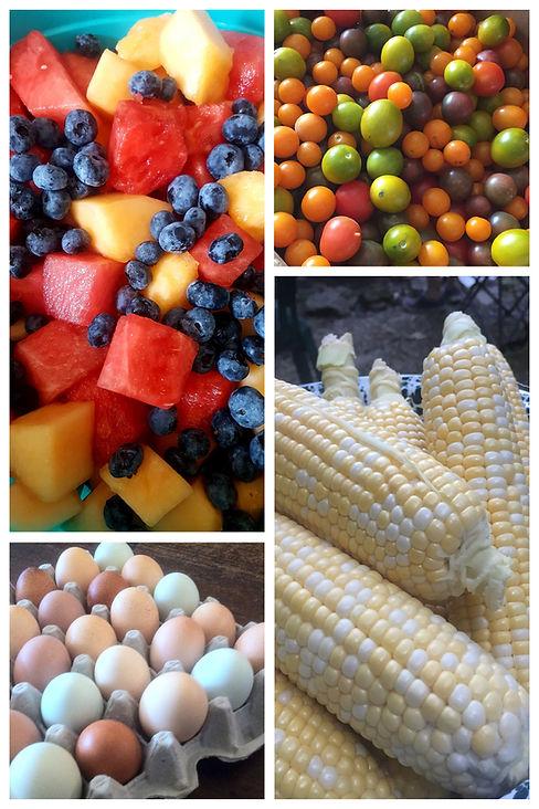 Fresh Ingredients-1.jpg