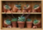 vendita vasi per piante e fiori