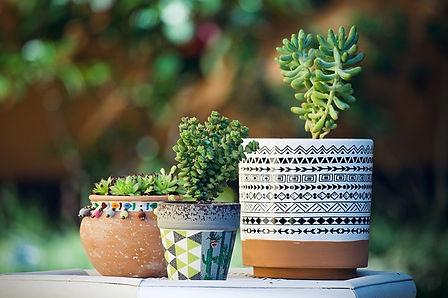 Vendita vasi per balconi e giardini