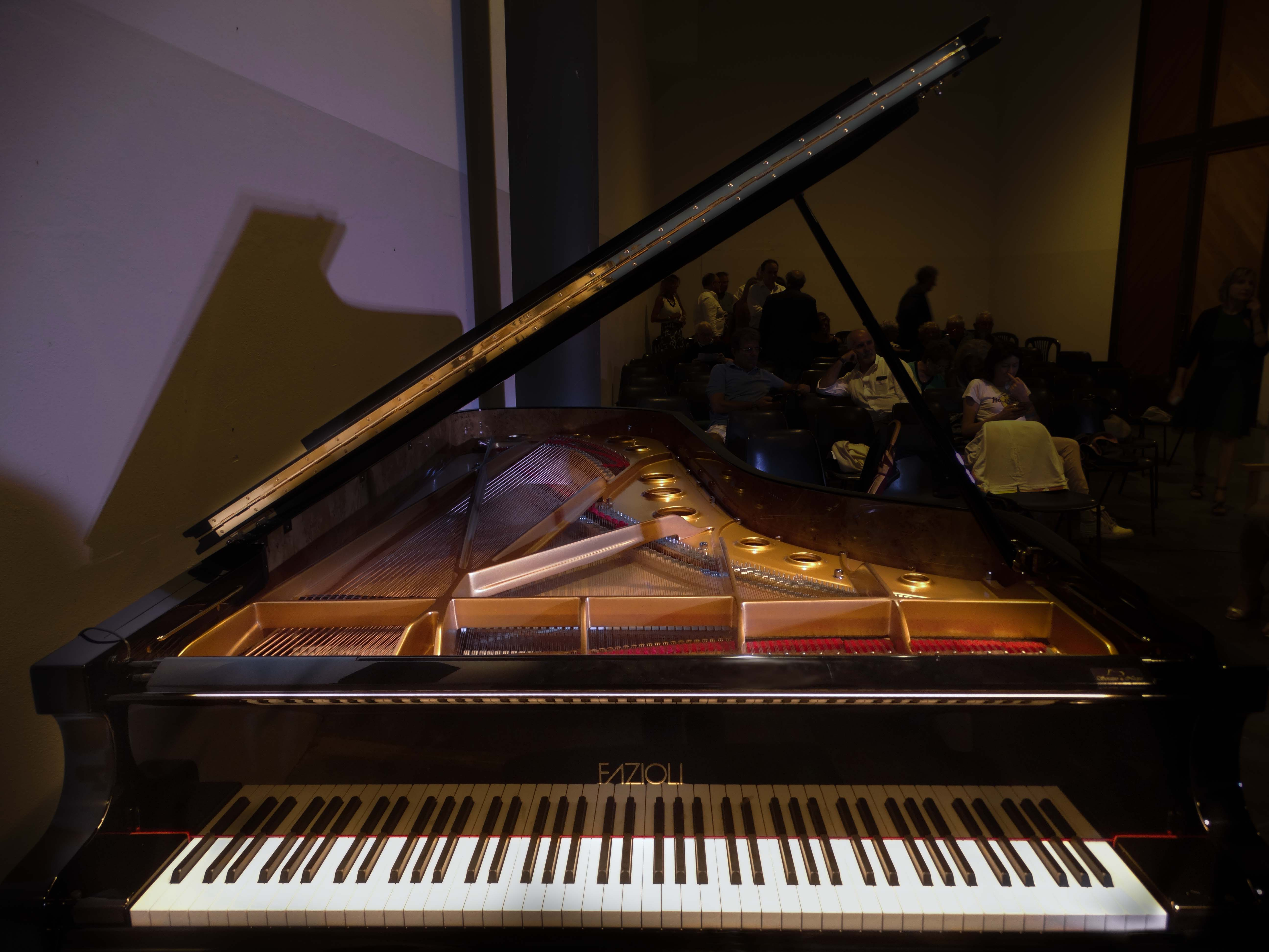 Foto pianoforti, pianisti, musicisti