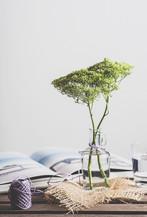 Flowers in Glass Jar