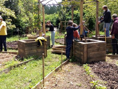 Plantations dans le jardin pédagogique