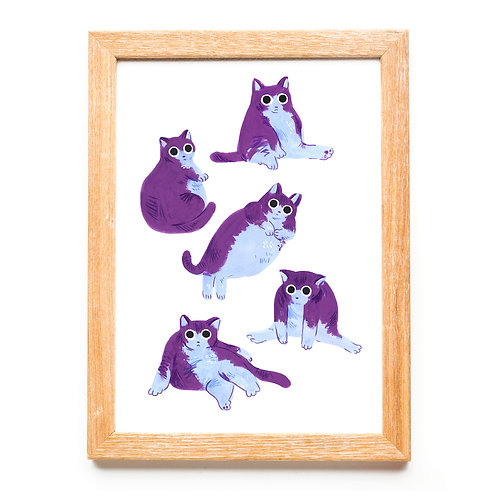 Chubby Cats
