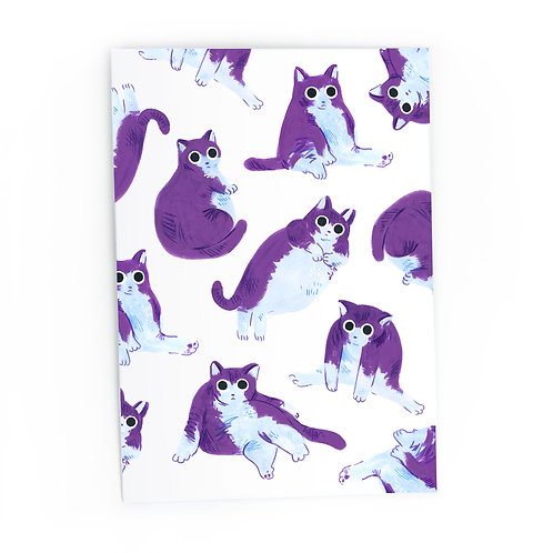 Chubby Cats! - Greeting card