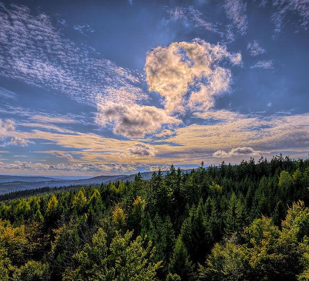 Wald&Himmel_8324-HDR-1.jpg