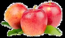 231-2315737_smitten-apples-hd-png-downlo