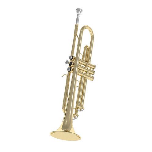 3Dscan3Dmodel realistic instrument violoncello trumpet guitar pianovray 3d studio max max fbx obj
