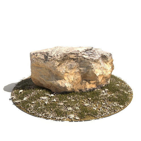 3Dscan 3Dmodel realistic stone rock tree environment nature lawn grass stump forest vray 3d studio max max fbx obj