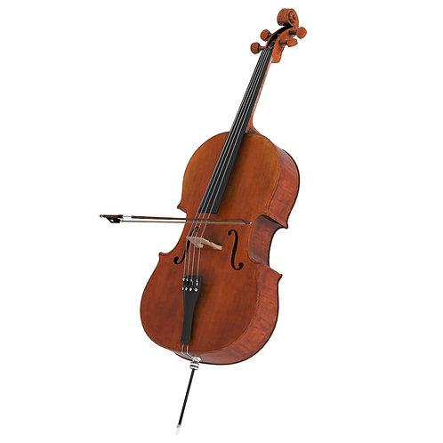 Instrument Violoncello