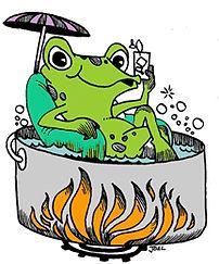 frog-in-a-pot.jpg