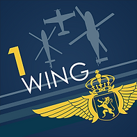 1 wing.png