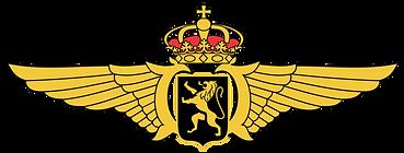 Belgian_Air_Component_wings.png