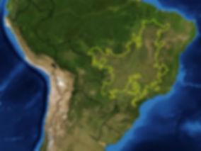Mapa do cerrado satélite
