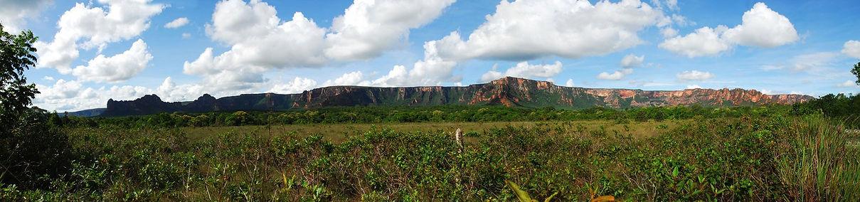 brazilian-savannah-1250584.jpg
