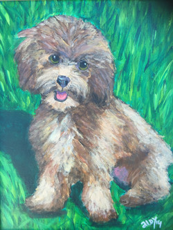 "Teddy (Sold) 11""x14"""