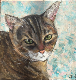 "Cat ""Butch"" (Sold)  12""x12"""