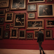 Take Virtual Tours of Countries, Zoos or Museums