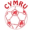 Wales Football Cymru Peldroed