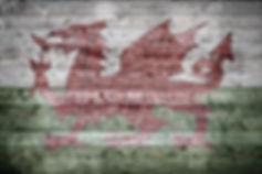 feWales Wales football tops for women