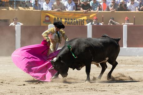 Sebastián Castillo, Céret, 17 July 2016.  Novillo of Vinhas de Aguas de Moura