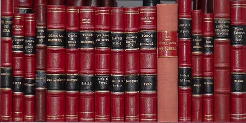 Books and Puente AMWEB NoWM-4485.jpg